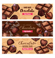 chocolate candies and choco sweets vector image