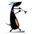 Dog plays on trumpet vector image