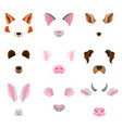flat set of animal faces - ears and noses vector image