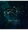 Abstract polygonal backgroun Low poly design vector image vector image