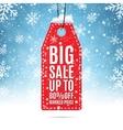 Big sale price tag vector image