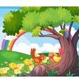 Birds under the tree with a rainbow in the sky vector image vector image
