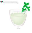 Borhani or Bangladeshi Cpicy Salted Yogurt Drink vector image vector image
