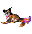 Cute fluffy ferret in the black witch hat flying