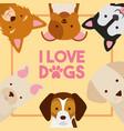 dog animal domestic vector image