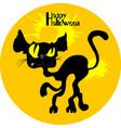 wild black cat halloween vector image vector image