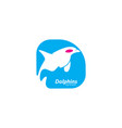 dolphins logo template vector image