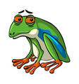green frog with sad face vector image