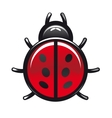 Red and black spotted cartoon ladybug vector image vector image