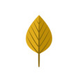 round dry yellow autumn leaf symbol graphic design vector image vector image
