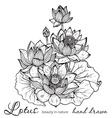 beautiful monochrome floral bouquet lotus vector image