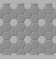 hexagonal paving slabs seamless pattern vector image vector image
