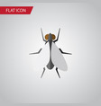 isolated insect flat icon hum element can vector image vector image
