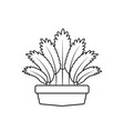 potted leaves organic nature plants flat fill vector image