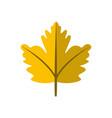 simple yellow autumn leaf symbol graphic design vector image