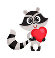cute raccoon character holding big red heart sy vector image vector image