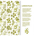 flat poster or banner template with legume plants vector image vector image