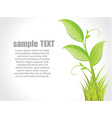 Green leaves concept vector image