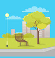 isolated wood bench near lantern and tree in park vector image vector image