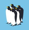 penguin flock animal north pole bird antarctica vector image vector image