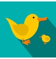 Yellow ducklings flat icon vector image vector image