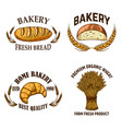 bakery set emblems with bread in engraving vector image