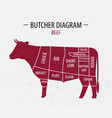cut of beef poster butcher diagram vector image vector image