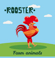 cute rooster farm animal character farm animals vector image vector image
