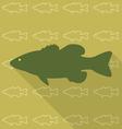 fish brown vector image vector image