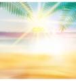 Grunge palm background vector image