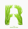 letter r of juicy grass alphabet green r vector image