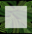 palm background vector image