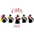 set of cats isolated vector image vector image