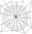 Spider web spiral orb web type Halloween vector image