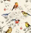 vintage seamless texture little birds vector image vector image