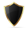 Glittering black shield with gold body vector image vector image