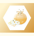 honey and chamomile in a jar vector image