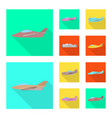 isolated object travel and airways icon vector image vector image