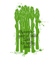 Of Isolated Green Asparagus Silhouette vector image vector image