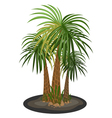 Palm trees cartoon on a white background vector image vector image