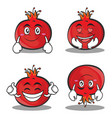 pomegranate cartoon character style set vector image vector image