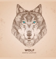 retro hipster animal wolf hand drawing muzzle vector image vector image