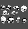 set black and white human skulls vector image
