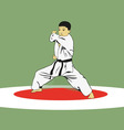 The boy showing karate vector image vector image