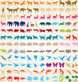 Animals silhouettes collection vector image