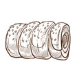 bun or roll with sesame isolated sketch bakery vector image