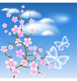 Flowering tree against a background of clouds vector image