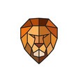 head of a lion logo template for business vector image vector image