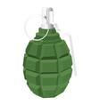 military green grenade 3d vector image