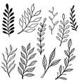 set vintage hand drawn floral design vector image vector image